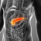 pancreas-generic