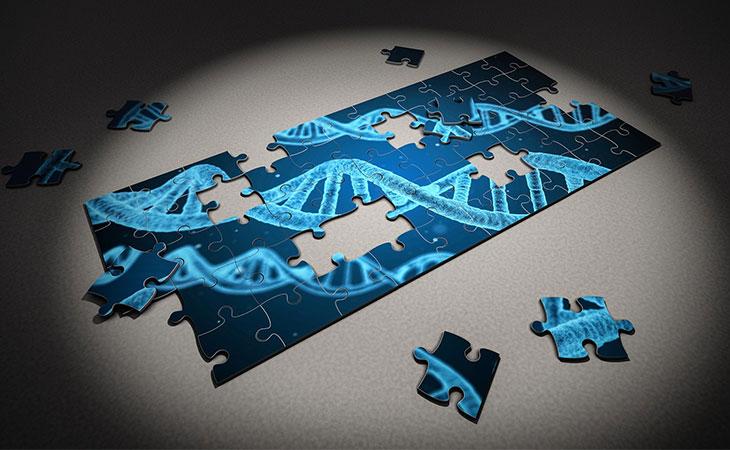 κληρονομικότητα, γονίδια, γονιδιακή μετάλλαξη, γενετικά τεστ, DNA, καρκίνος
